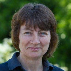 Sue Grace