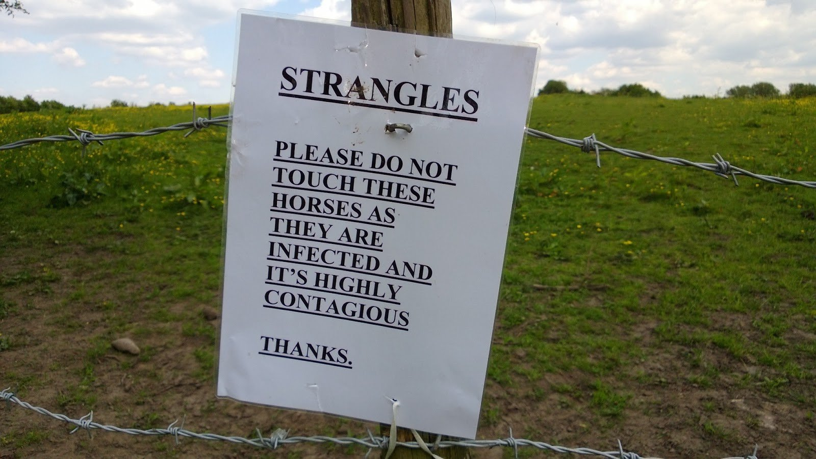 Sign warning about strangles