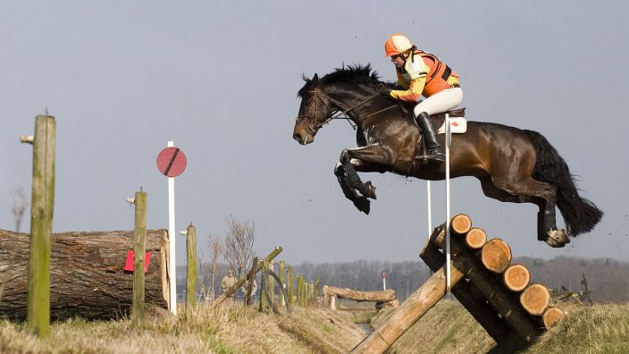 Horse jumping cross country, Photographer: Pieter Geerts